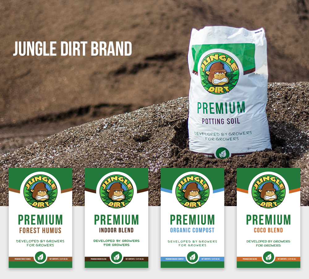 Jungle Dirt Brand Identity