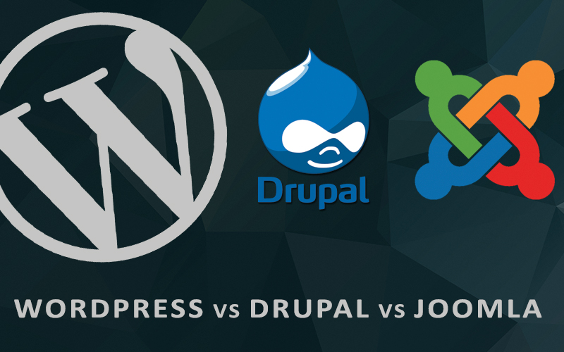 Wordpress, Drupal, Joomla for Web Design