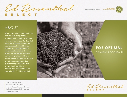 Brochure Graphic Design – Ed Rosenthal