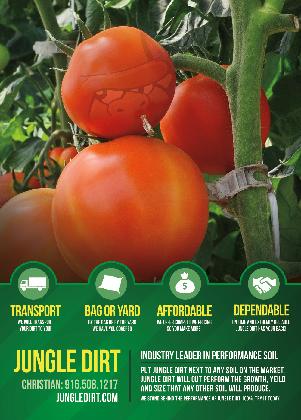 Jungle Dirt Brand Identity - Flyers