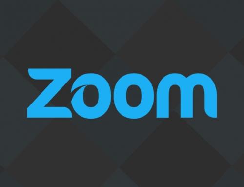 Zoom Folsom Brand Identity