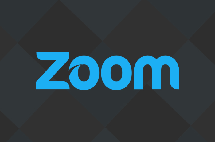 Zoom Folsom - Brand Identity and Website Design Project